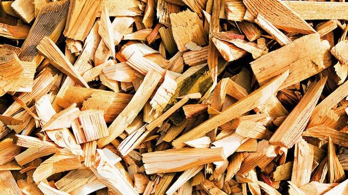 Mitsubishi And Kepco S New Venture Promotes Biomass Power