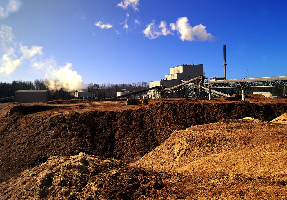 Biomass energy definition what is